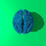 Original blue  brain drawing Stock Photo