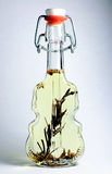 Original bottle with oil. Bottle in form of violin with olive oil and spices Royalty Free Stock Photos