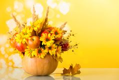 Original bouquet of apples, flowers and ears of corn in the pumpkin, on bright yellow. Original bouquet of apples, flowers and ears of corn in pumpkin, on bright Royalty Free Stock Photo