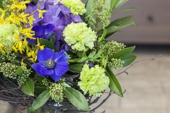 The original bouquet of blue anemones, carnations, forsythia stands in a glass vase. Original bouquet of flowers of blue anemones, carnations, forsythia with Stock Images