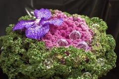 Original bouquet Stock Photo