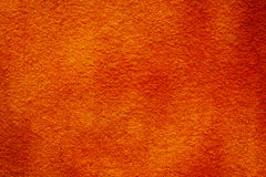 Original bright orange bright background. Macro photography wall Royalty Free Stock Images