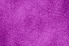 Original bright purple background. Macro photography wall. Original bright background, Macro photography wall Royalty Free Stock Image