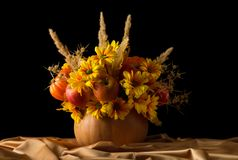 Original composition of apples and flowers in pumpkin on silk fabric, isolated on black royalty free stock photography