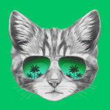 Original drawing of Cat with mirror sunglasses. Stock Image