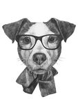 Original drawing of English Bulldog with mirror sunglasses. On white background Stock Photography