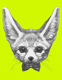 Original drawing of Fennec Fox with glasses and bow tie. Isolated  on  colored background Royalty Free Stock Photos