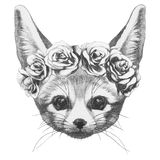 Original drawing of Fennec Fox with roses. Isolated on white background Royalty Free Stock Photo