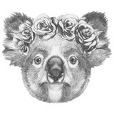 Original drawing of Koala with floral head wreath. Stock Images