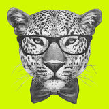 Original drawing of Leopard with glasses and bow tie. Stock Photo