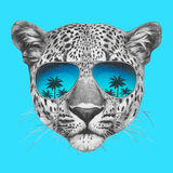 Original drawing of leopard with mirror sunglasses. Isolated on colored background Royalty Free Stock Photos