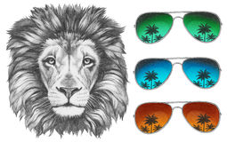 Original drawing of Lion with sunglasses. Royalty Free Stock Image