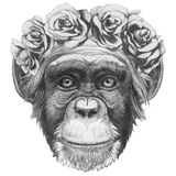 Original drawing of Monkey with floral head wreath. Stock Photos