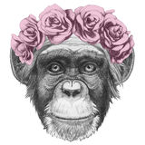 Original drawing of Monkey with floral head wreath. On white background Royalty Free Stock Images