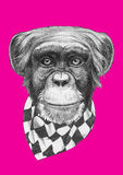 Original drawing of Monkey with scarf. On colored background Stock Photos