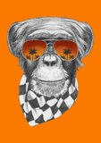 Original drawing of Monkey with scarf and sunglasses. On colored  background Stock Images
