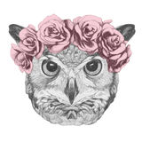 Original drawing of Owl with floral head wreath. Isolated on white background Royalty Free Stock Photo