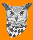 Original drawing of Owl with scarf. On colored  background Stock Photo
