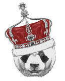 Original drawing of Panda with crown. Isolated on white background Royalty Free Stock Images