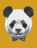 Original drawing of Panda with glasses and bow tie. Isolated Royalty Free Stock Images