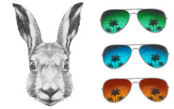 Original drawing of Rabbit with mirror sunglasses. On white background Stock Image