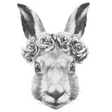 Original drawing of Rabbit  with roses. Stock Photo