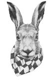 Original drawing of Rabbit  with  scarf. Royalty Free Stock Photos