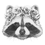 Original drawing of Raccoon with floral head wreath. Royalty Free Stock Photography