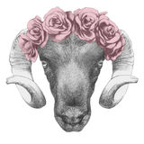 Original drawing of Ram with roses. On white background Stock Photos