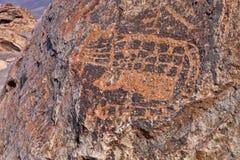 Original drawings on the stones of Toro Muerto, Peru. The Original drawings on the stones of Toro Muerto, Peru royalty free stock photography