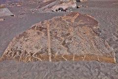 Original drawings on the stones of Toro Muerto, Peru. The Original drawings on the stones of Toro Muerto, Peru royalty free stock images