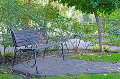 Original empty wooden bench in the recreation park. Summer royalty free stock images