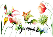Original floral background with flowers and title summer Stock Images