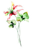 Original floral background with flowers. Watercolour illustration Stock Photo