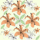 Original floral background with orange lilies Royalty Free Stock Photo