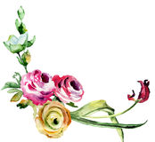 Original floral background with wild flower Stock Images