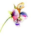 Original flower illustration Stock Images