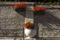 Original flowerbed in Kislovodsk Stock Photo