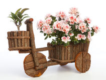 Original flowerpot Stock Photography