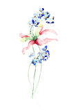 Original flowers illustration. Watercolor illustration Royalty Free Stock Photos