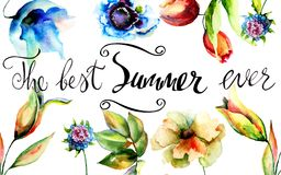 Original flowers with title the best summer ever. Watercolor illustration, Hand drawn lettering design Royalty Free Stock Photography