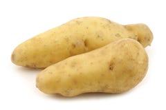 Original french rattepotatoes (Solanum tuberosum) Stock Photo