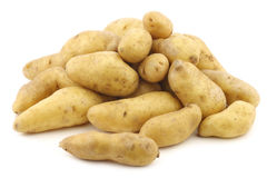 Original french rattepotatoes (Solanum tuberosum) Stock Image