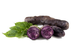 Original French violet potato Vitelotte with leaves Stock Photo