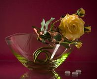 Original glass vase with single flower on maroon Royalty Free Stock Photos