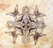 Original hand draw. Butterfly and ornamental mandala with flower and old vintage paper structure. computer collage. Royalty Free Stock Images