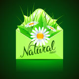 Original hand lettering Natural and eco design elements. Handmad. E calligraphy. Organic, bio, natural design template. Colorful patterns for advertising. Can be Stock Image