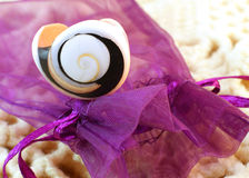 Original handmade ring of sea shell Stock Photo