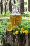 Original homemade dandelion wine Stock Image