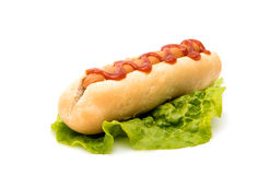 Original hot dog. Stock Photography